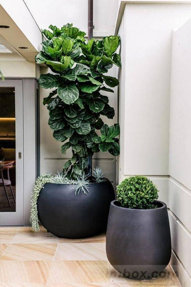 garden pot design-861383866208373098