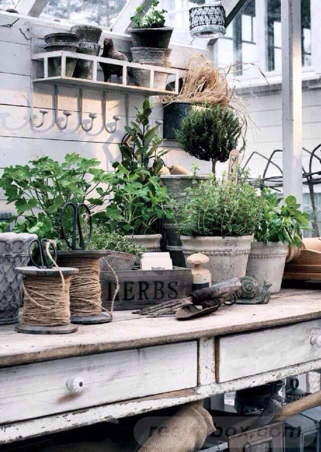 garden pot design-436638126370803785