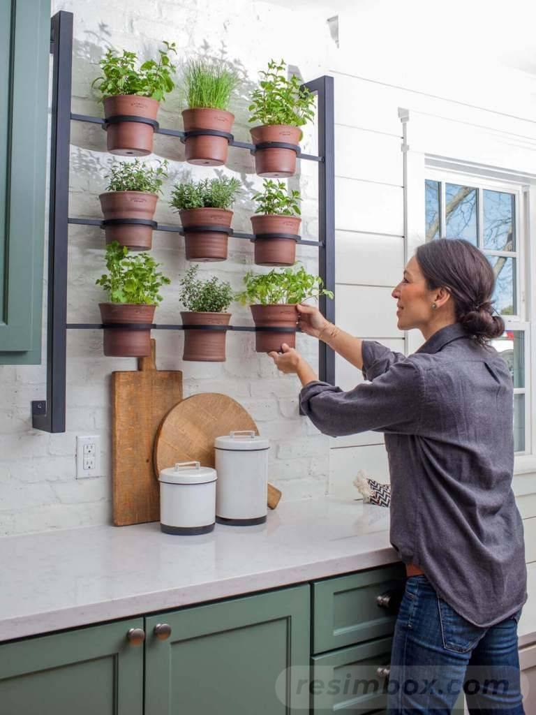 garden pot design-407435097535901477