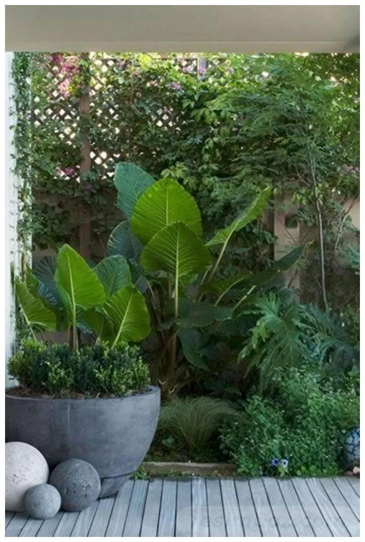 garden pot design-723953708831649704