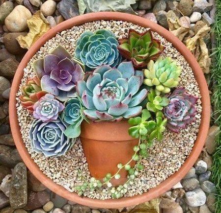 garden pot design-524317581616077470