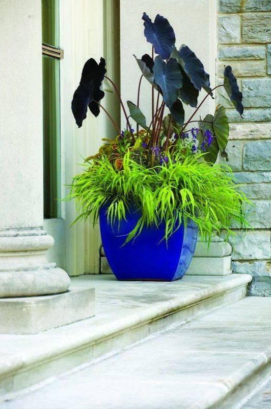 garden pot design-457889487086371700