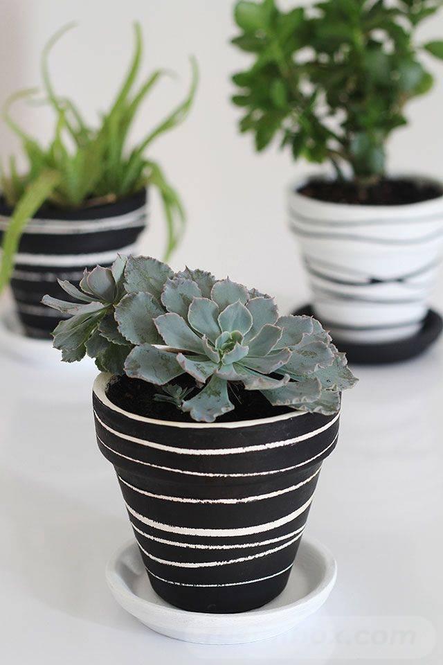 garden pot design-537054324314053821