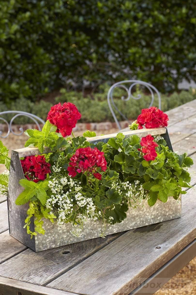 garden pot design-430586414366542179