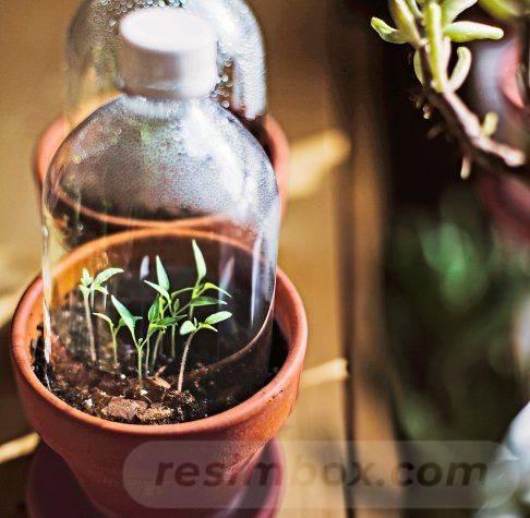 garden pot design-363384263683651499