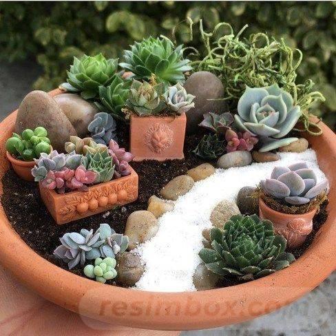 garden pot design-158963061834376481
