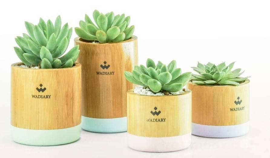 garden pot design-519954719470283889