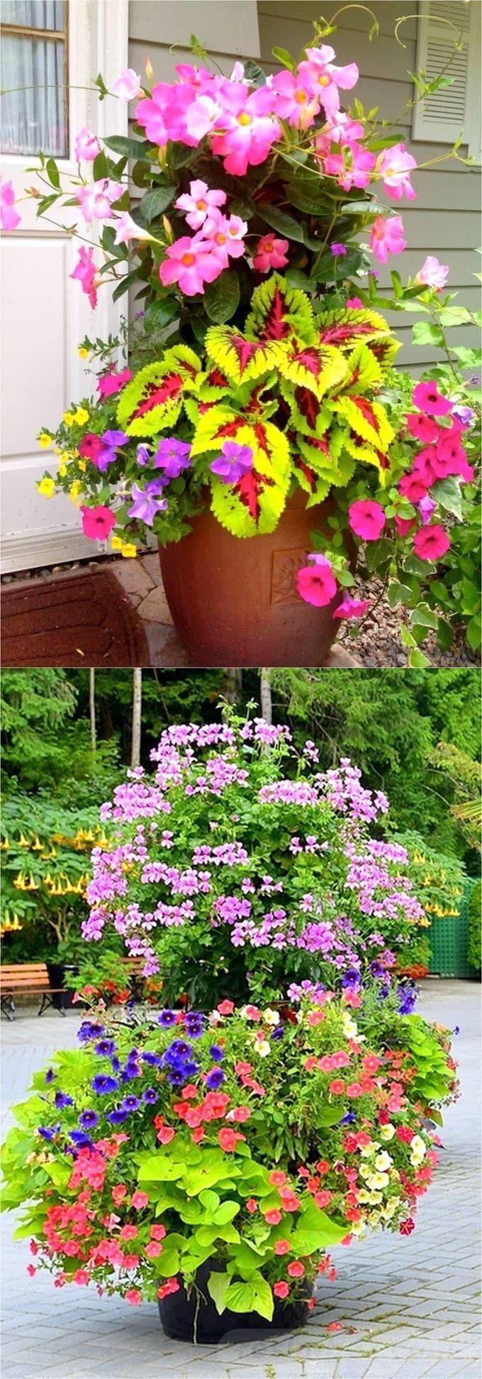 garden pot design-98657048072263219