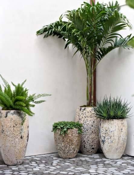 garden pot design-788130003521692223