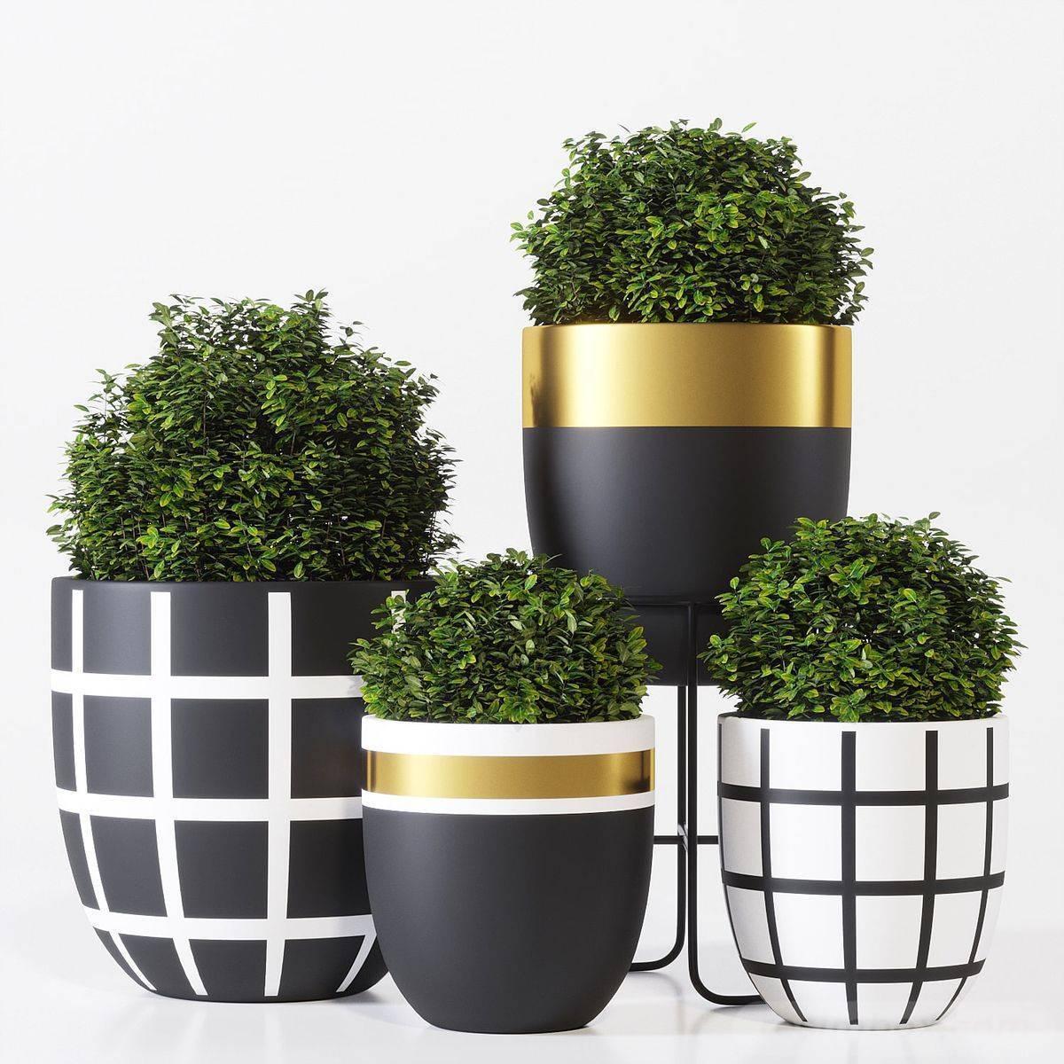 garden pot design-575546027369413055