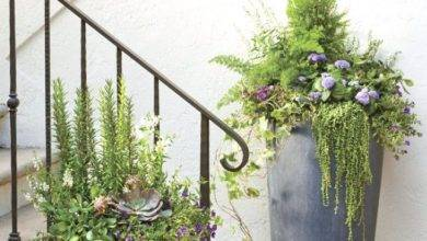 11 Top Pretty Front Door Flower Pots That Will Add Personality To Your Home