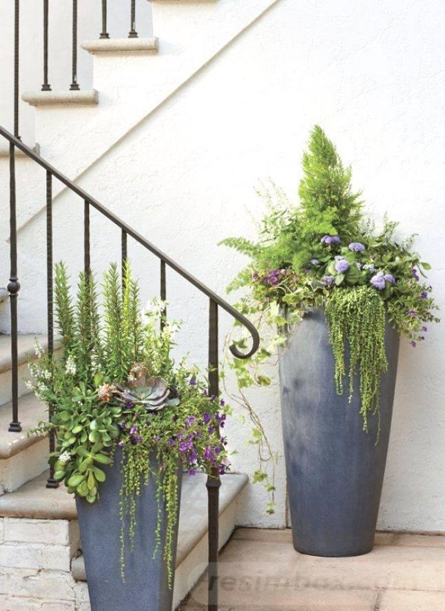 garden pot design-390546598937608006