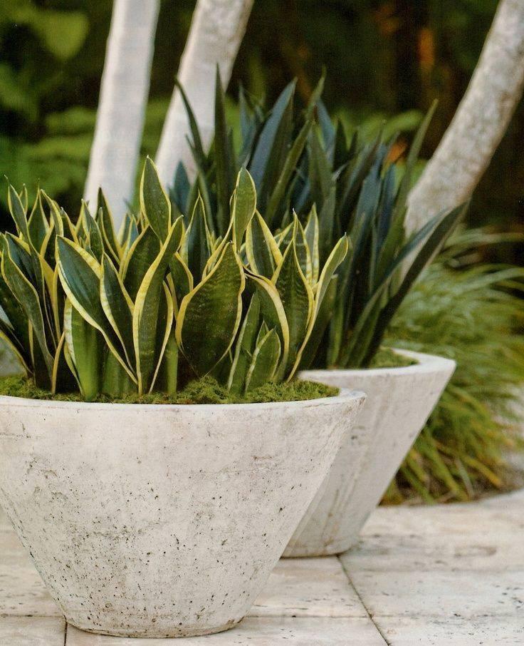 garden pot design-266979084141030540