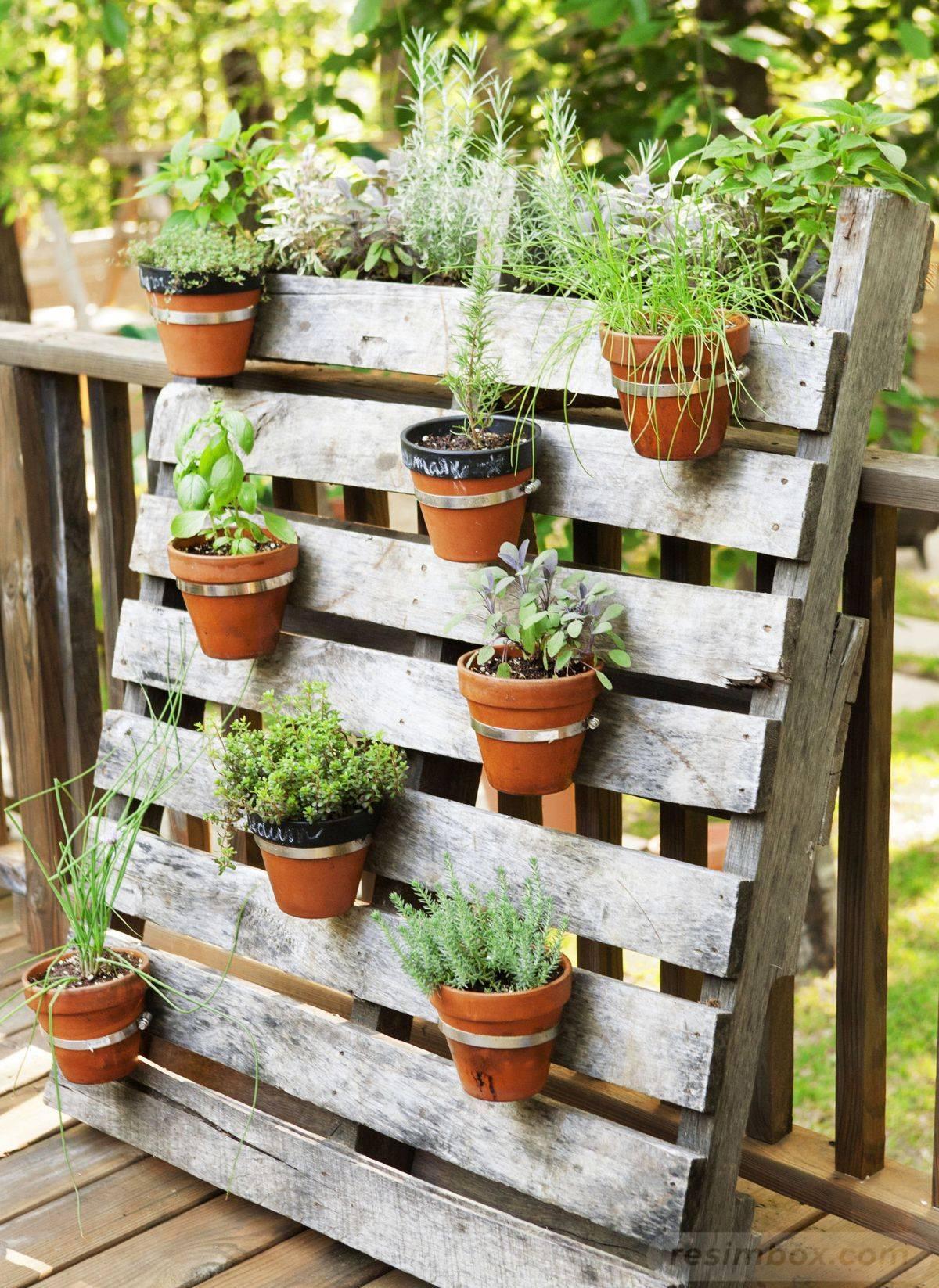 garden pot design-483644447464881702