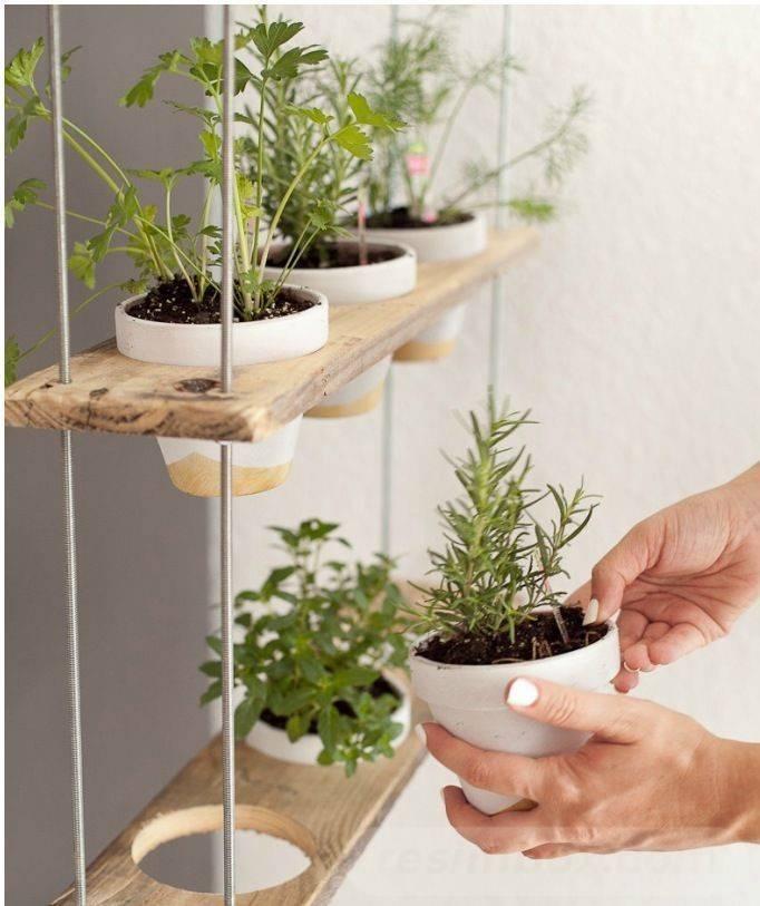 garden pot design-39617671708733849