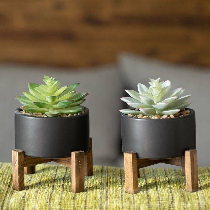 garden pot design-494270127853597844
