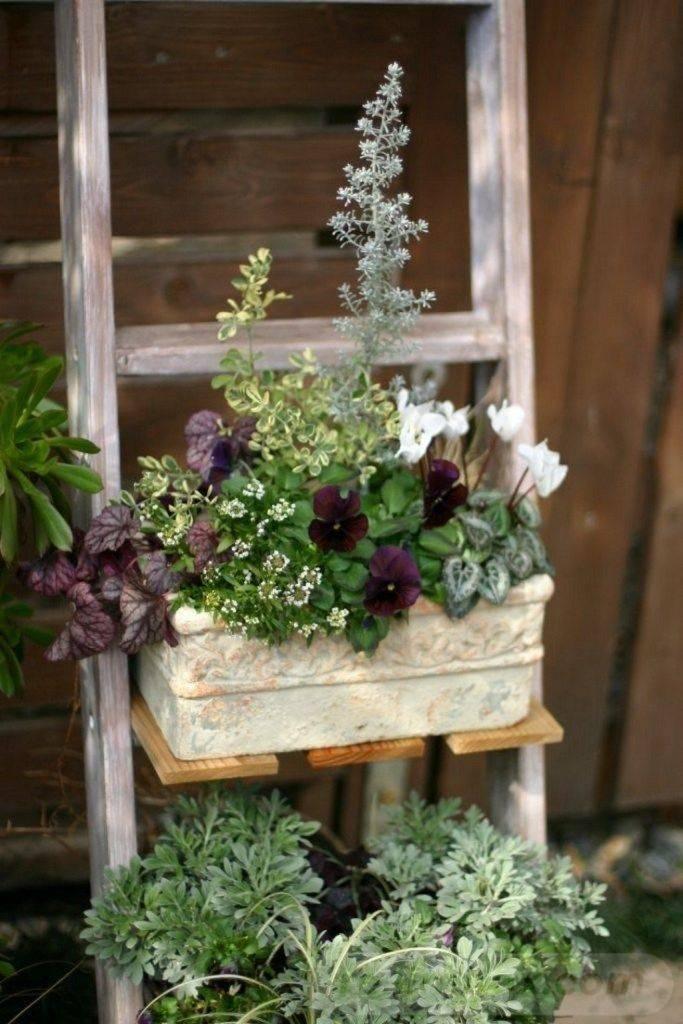 garden pot design-762093568176516155