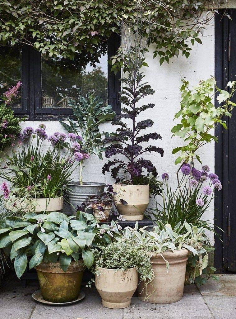 garden pot design-620230179912908905