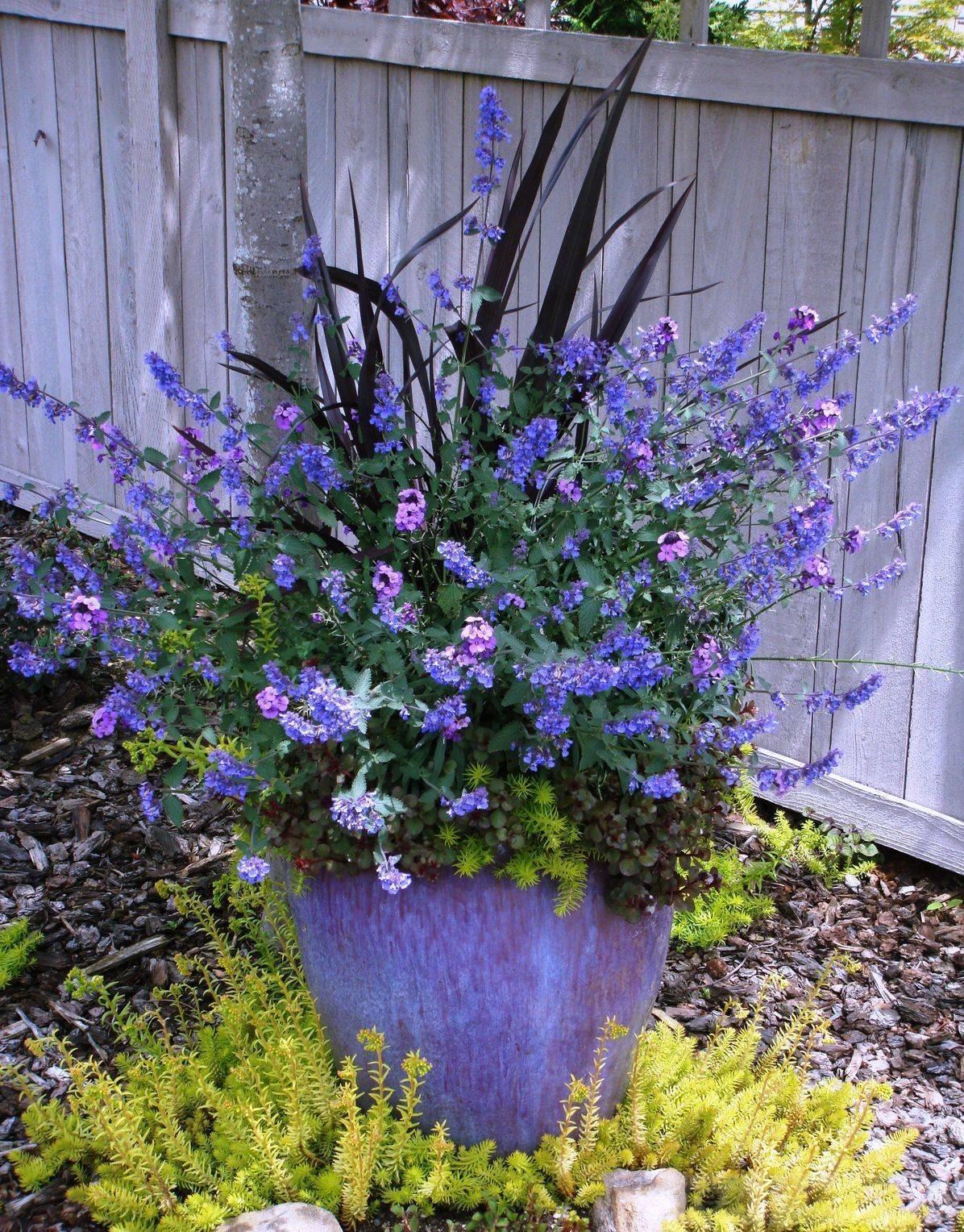 garden pot design-6473993184141678