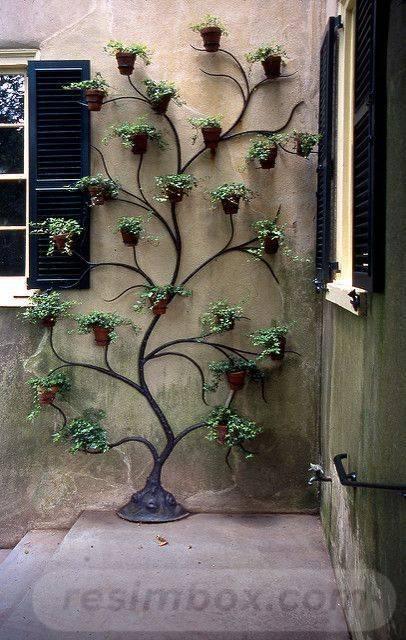 garden pot design-799740846310846906