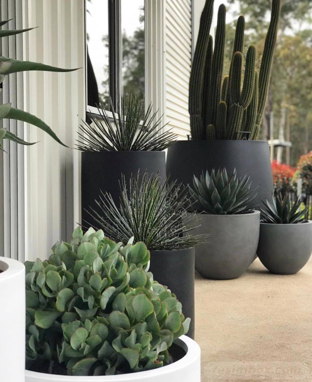 garden pot design-437201076324886644