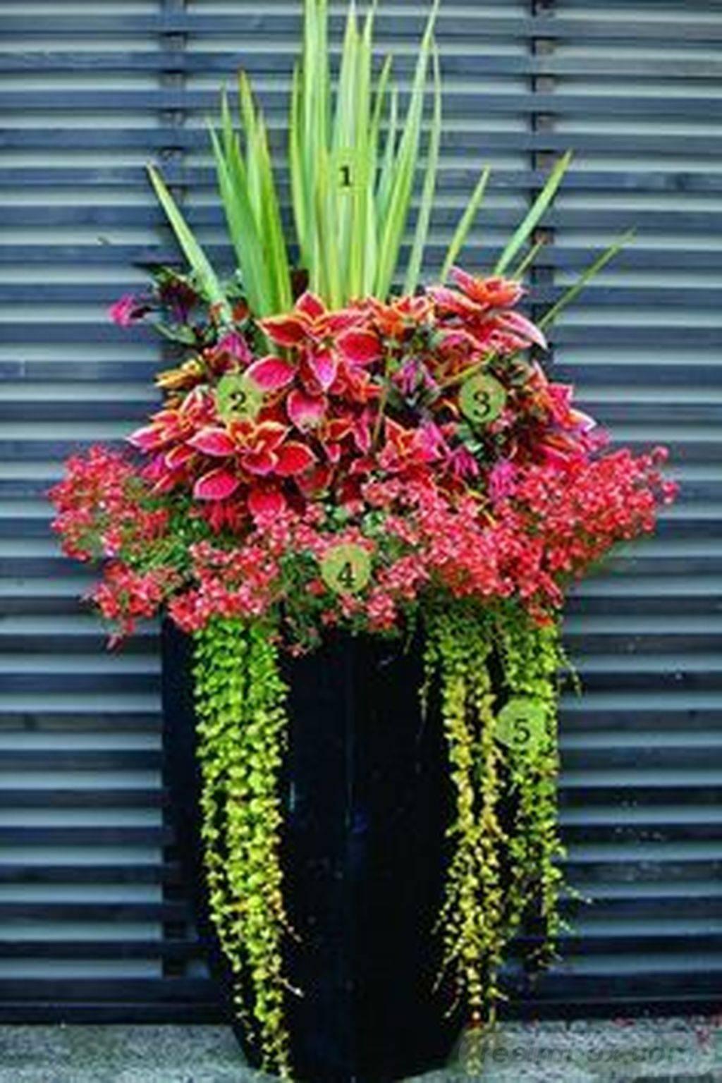 garden pot design-743938432178905195