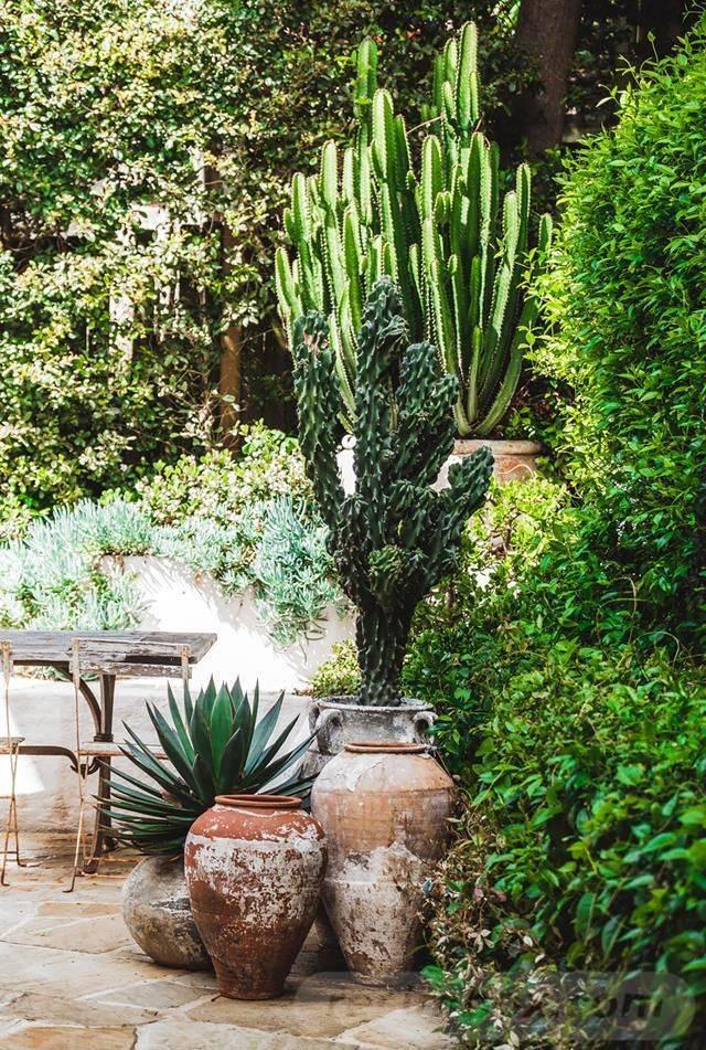 garden pot design-641903753118598784