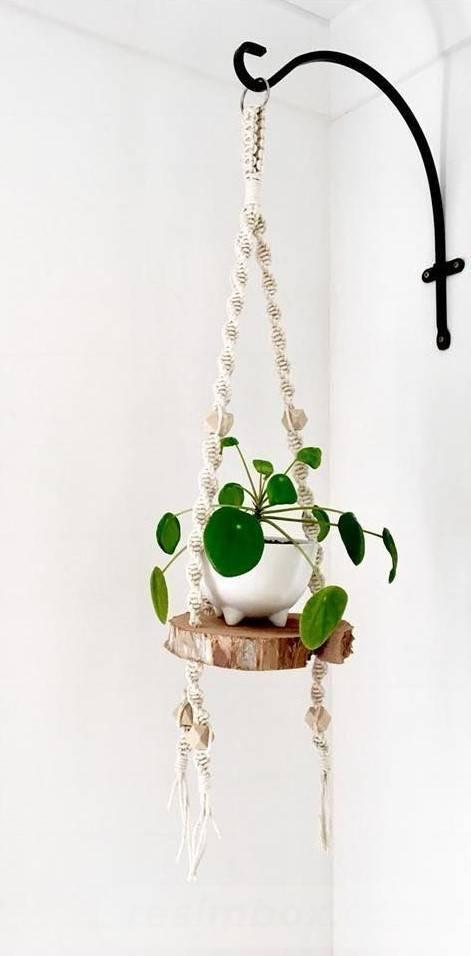 garden pot design-479422322831326601