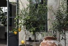10 Creative Succulent Container Arrangements