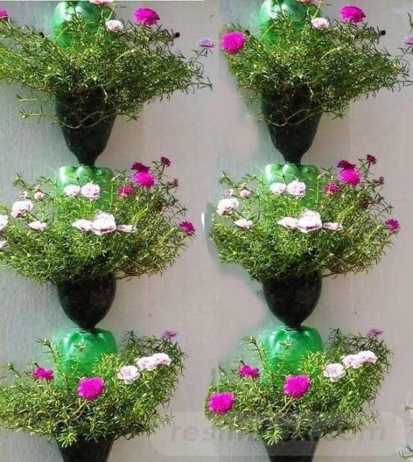 garden pot design-379991287310665251