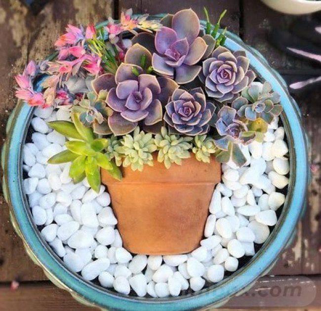 garden pot design-37365871895422369