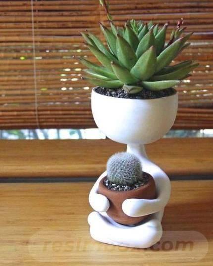 garden pot design-755478906222248502