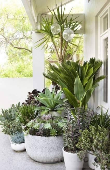 garden pot design-614811786611861815