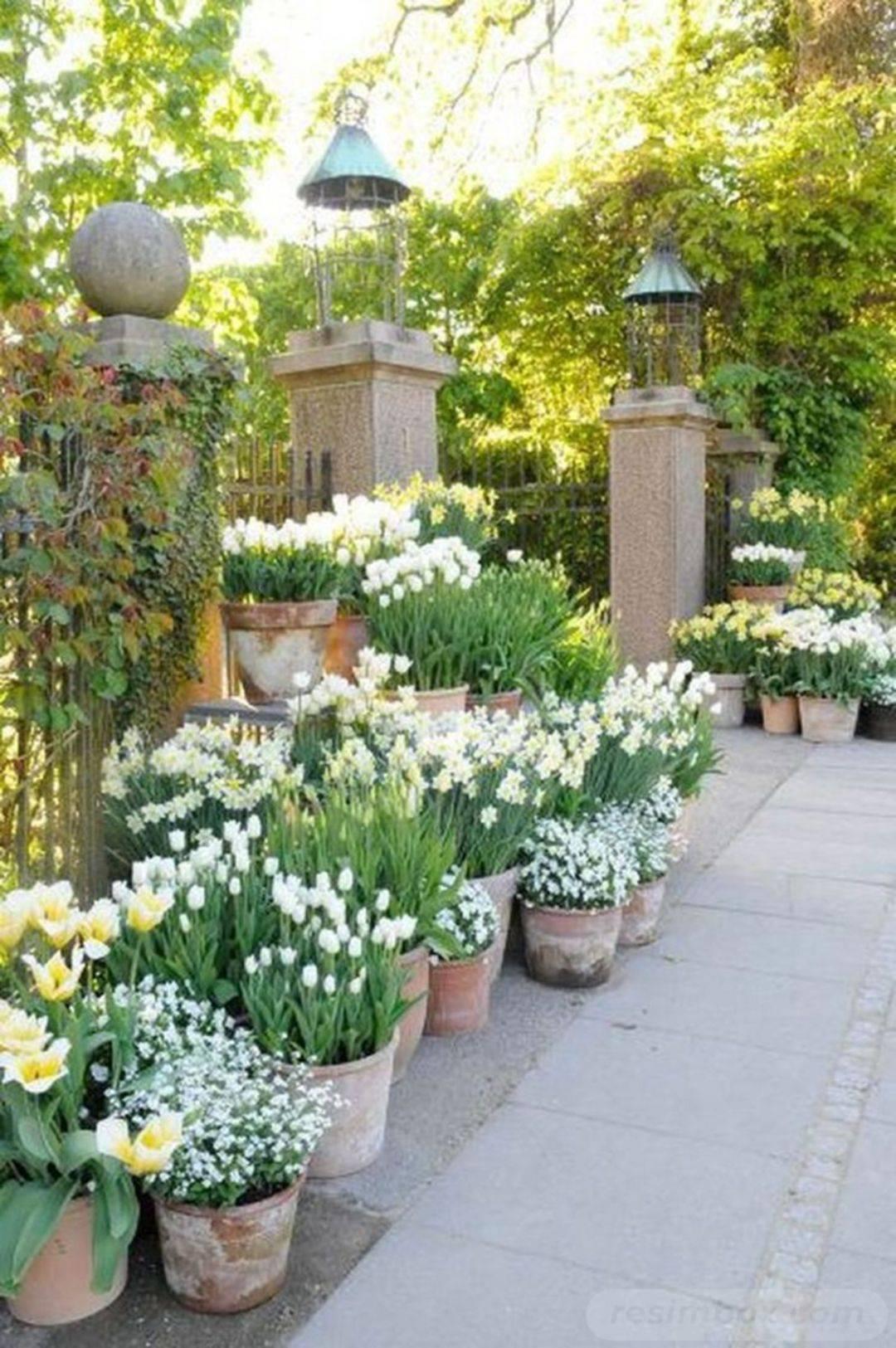 garden pot design-781374604079496549