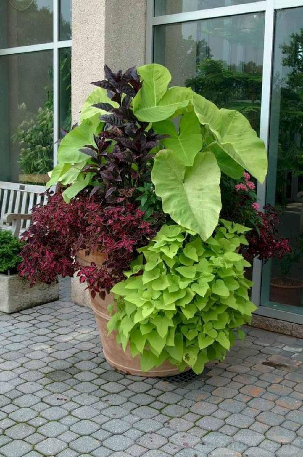 garden pot design-685250899532167690