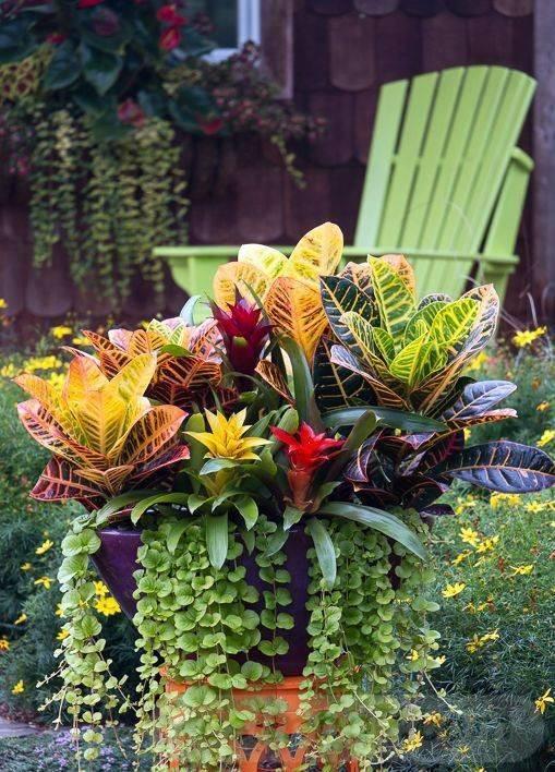 garden pot design-538039486733649922