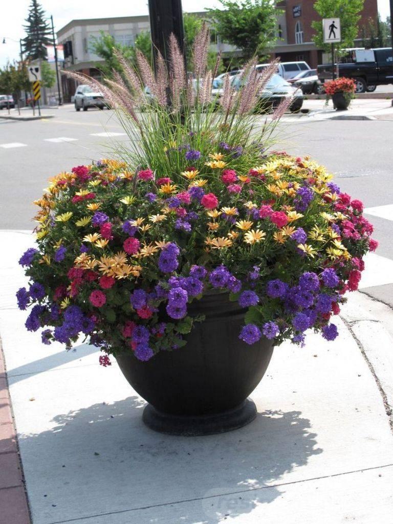 garden pot design-162481499043969685