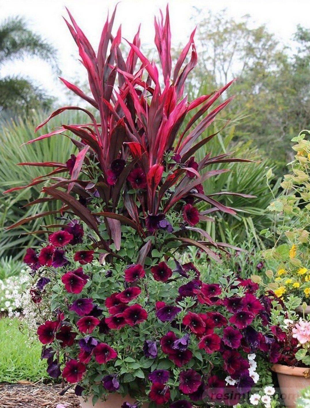 garden pot design-812759063982481878