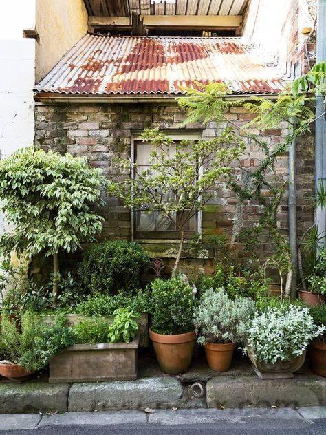 garden pot design-192951165271671974