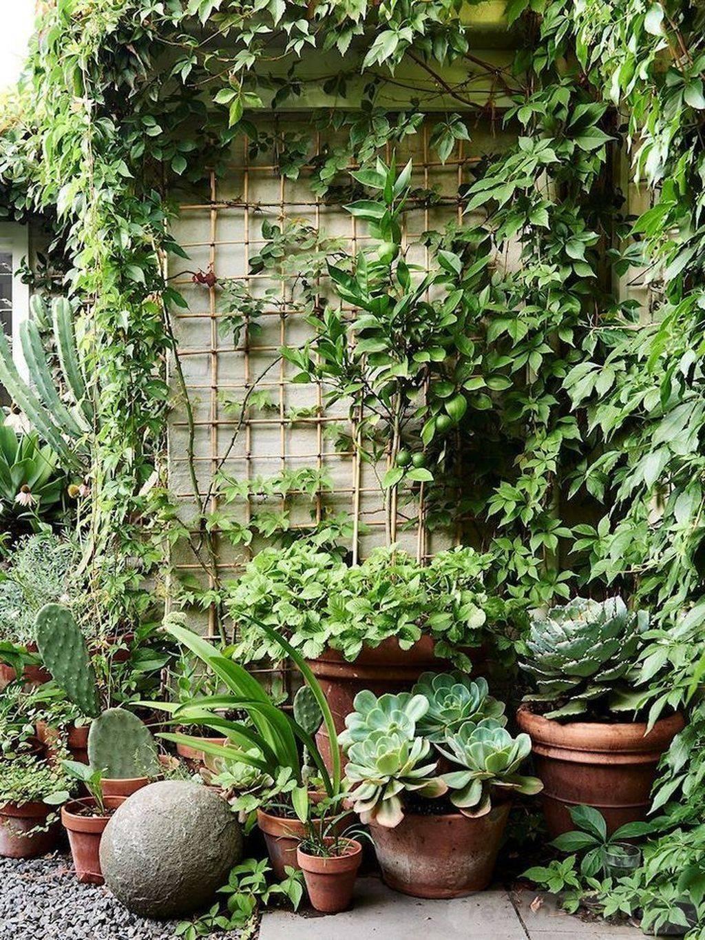 garden pot design-743938432178861384