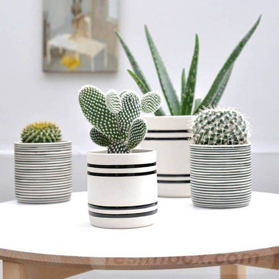garden pot design-165648092527599459