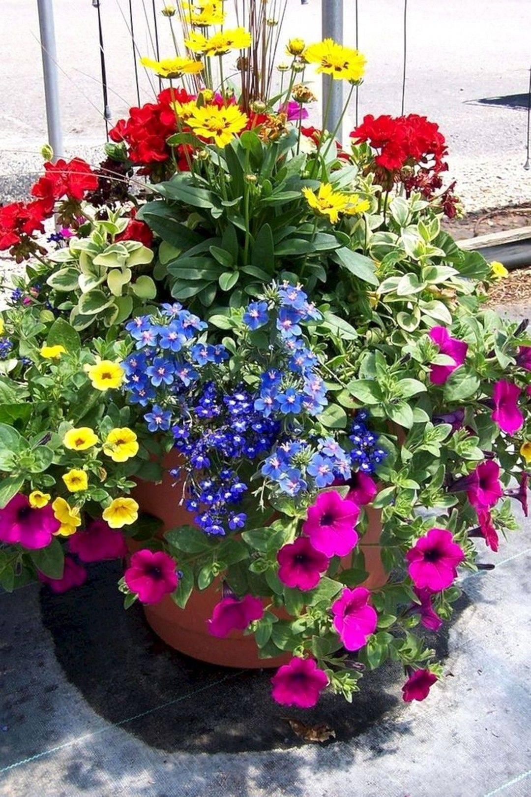 garden pot design-812759063982492831