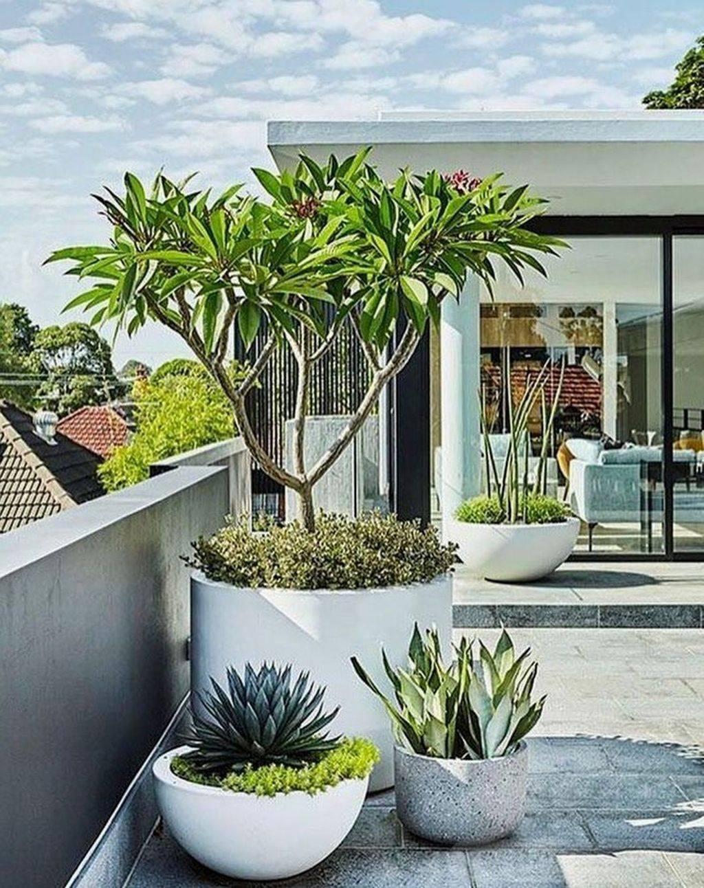 garden pot design-743938432173462298