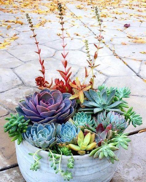 garden pot design-696580267339268644